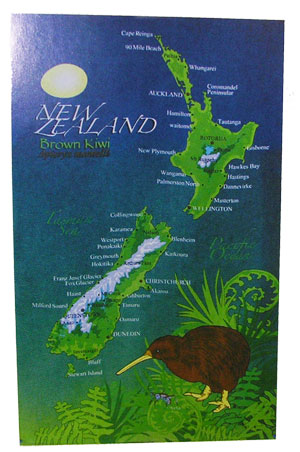 Tea Towel - New Zealand Map with Brown Kiwi