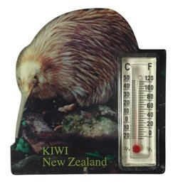 Fridge Magnet - Kiwi Thermometer