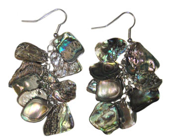 Natural Paua Chain Earrings