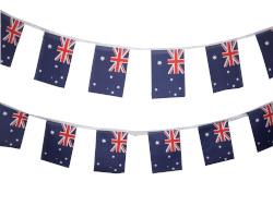 Australian Bunting (6m)